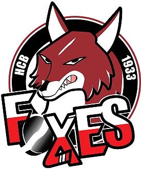 logo_bolzano_foxes