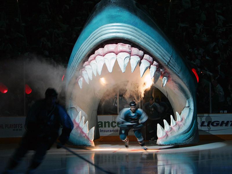 San Jose Sharks 3