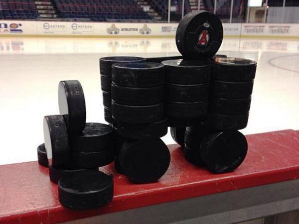zamboni korong Albany Devils