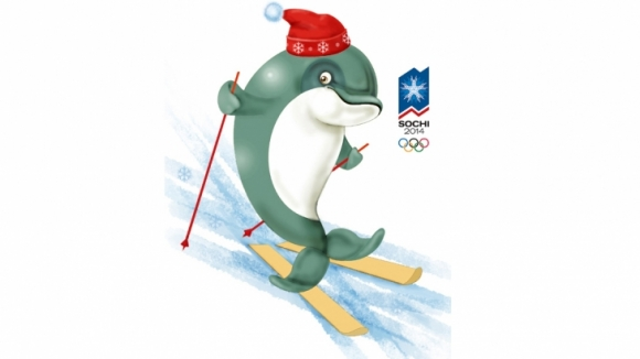 delfin szocsi
